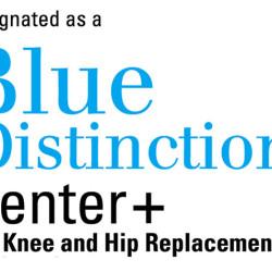 bluedistinctionpluscenter_knee_hip