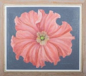Pink Petunia Artist: H Theodore Hallman, Sr.